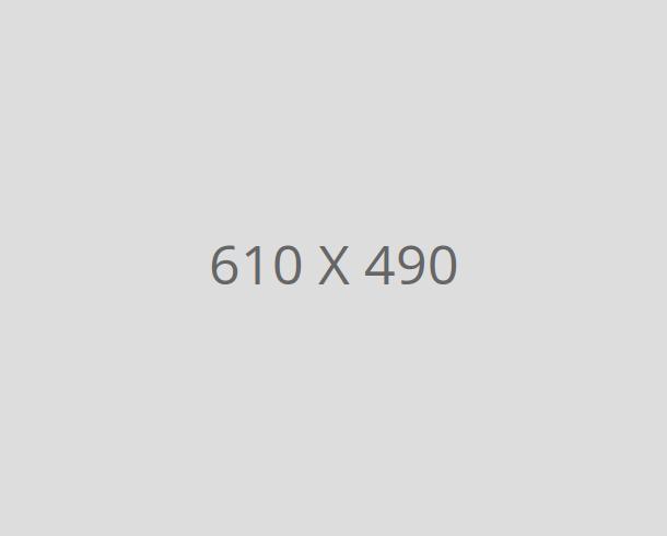 img-610-490